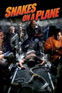 Download Snakes on a Plane Full Movie Hindi 720p