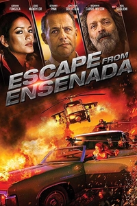 Downlaod Escape from Ensenada Hindi 720p