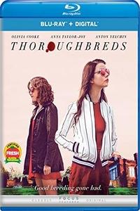 Download Thoroughbreds Full Movie Hindi 720p