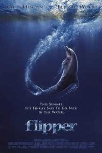Download Flipper Full Movie Hindi 720p