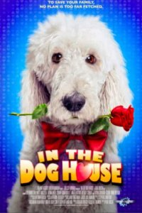 Download In the Dog House Full Movie Hindi 720p