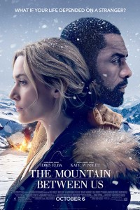 Stranded after a tragic plane crash, two strangers must forge a connection to survive the extreme elements of a remote snow-covered mountain. When they realize help is not coming, they embark on a perilous journey across the wilderness.