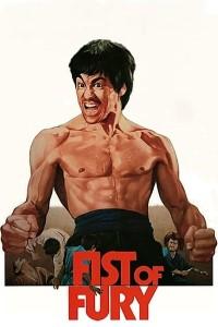 Download Fist of Fury Full Movie Hindi 720p