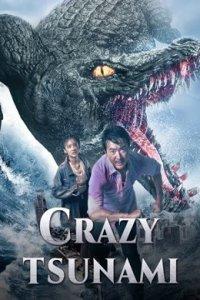 Download Crazy Tsunami Full Movie Hindi 720p
