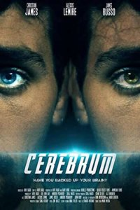 Download Cerebrum Full Movie Hindi 720p