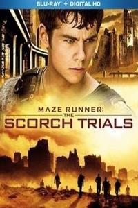 Maze Runner: The Scorch Trials (2015) Download (Hindi-English) 720p BluRay