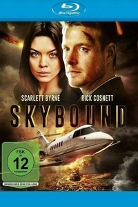 Skybound (2017) Full Movie Download in Dual Audio in Hindi 720p BluRay ESubs