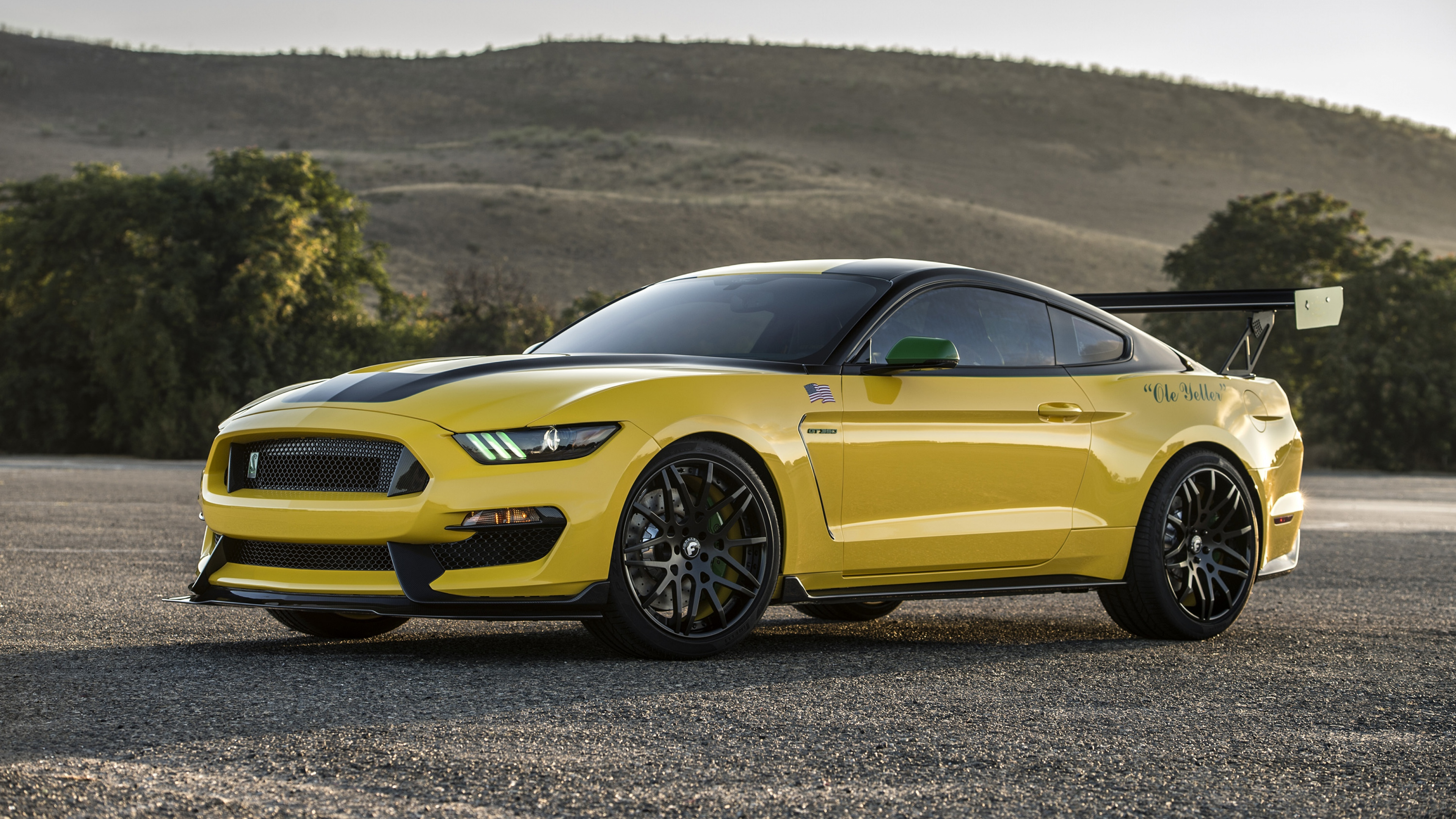 Ford Mustang Gt350 HD Cars 4k Wallpapers Images