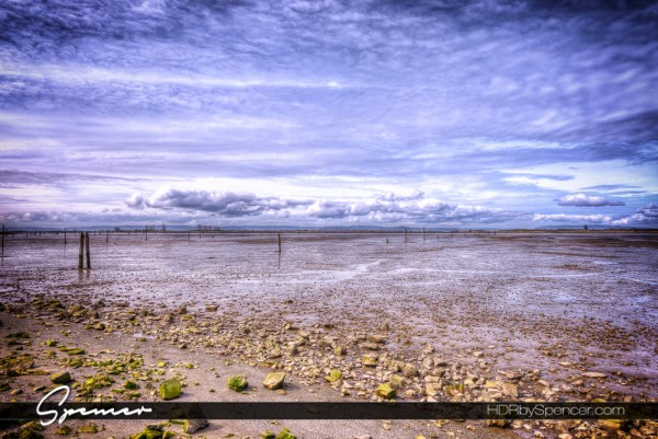 everett, washington, low tide, marina, pacific northwest, puget sound, landscape photography