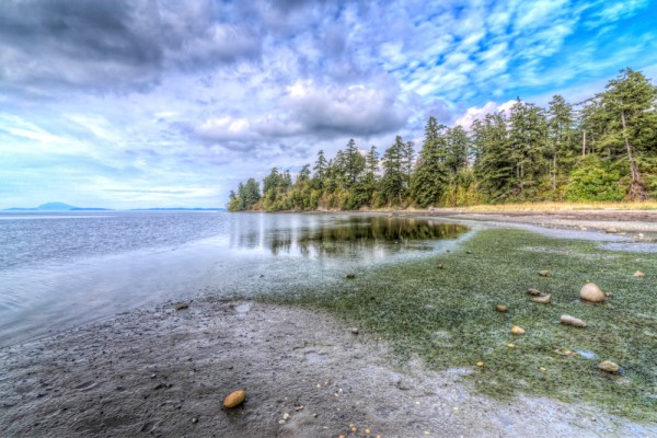 Padilla Bay in Anacortes Washington