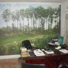 Office After Makeover