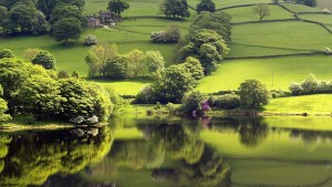 tranquil-lake-bigpic-shore-trees-green-meadows-wallpapers