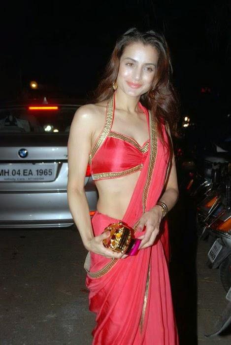 Amisha Patel Hot In Red Saree Photo Gallery navel stills
