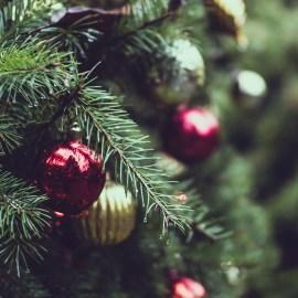 Božićna čestitka članicama i članovima HDZ-a Podsused-Vrapče