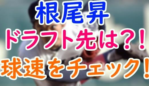 根尾昴(大阪桐蔭)の進路やドラフト先は?高校進学前の球速を動画でチェック!