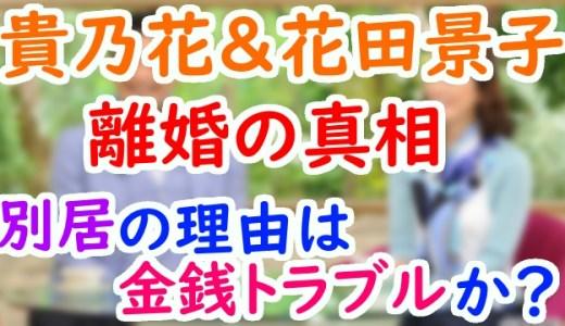 花田景子と貴乃花の離婚理由は?別居して実家帰りの原因は講演会の金銭問題ってマジ?