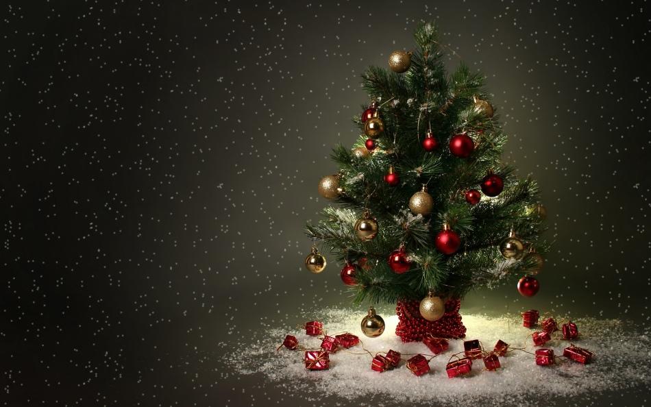 Pohon Natal di Feng Shui