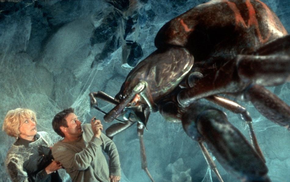 Как называется боязнь пауков (фобия) и методы лечения. Фобия: как называется боязнь пауков