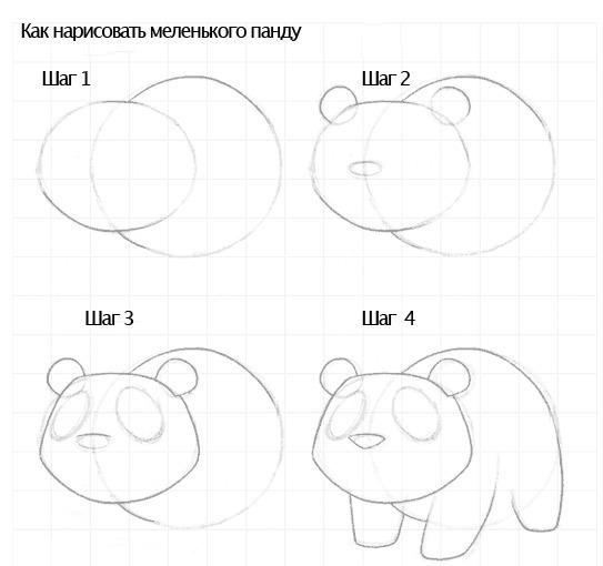 отлично рисунок панды поэтапно протез