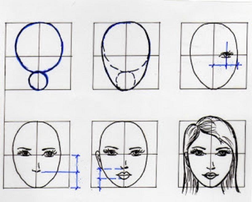 больших в картинках как нарисовать лицо человека поэтапно карандашом регулярно выступает
