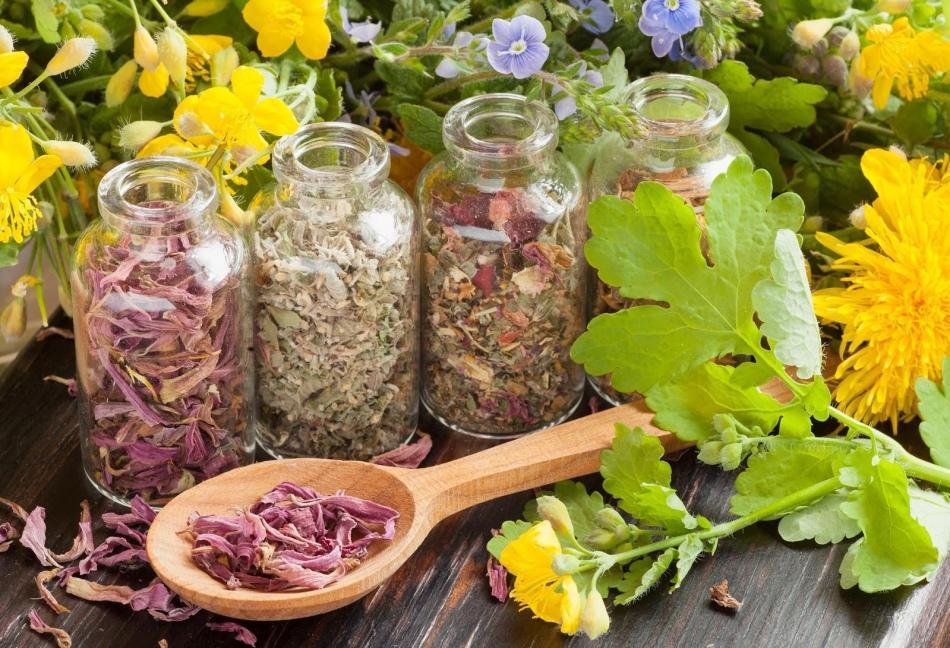 Healing Herbs.