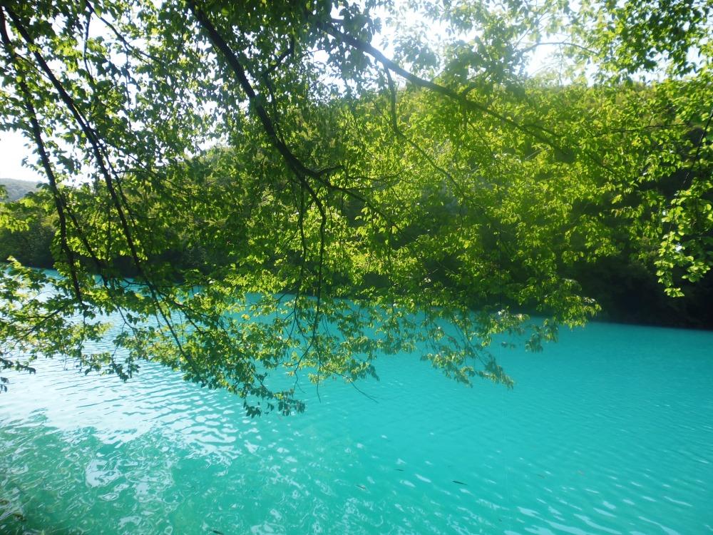 Jeziora Plitwickie - lazurowy kolor jeziora w Chorwacji