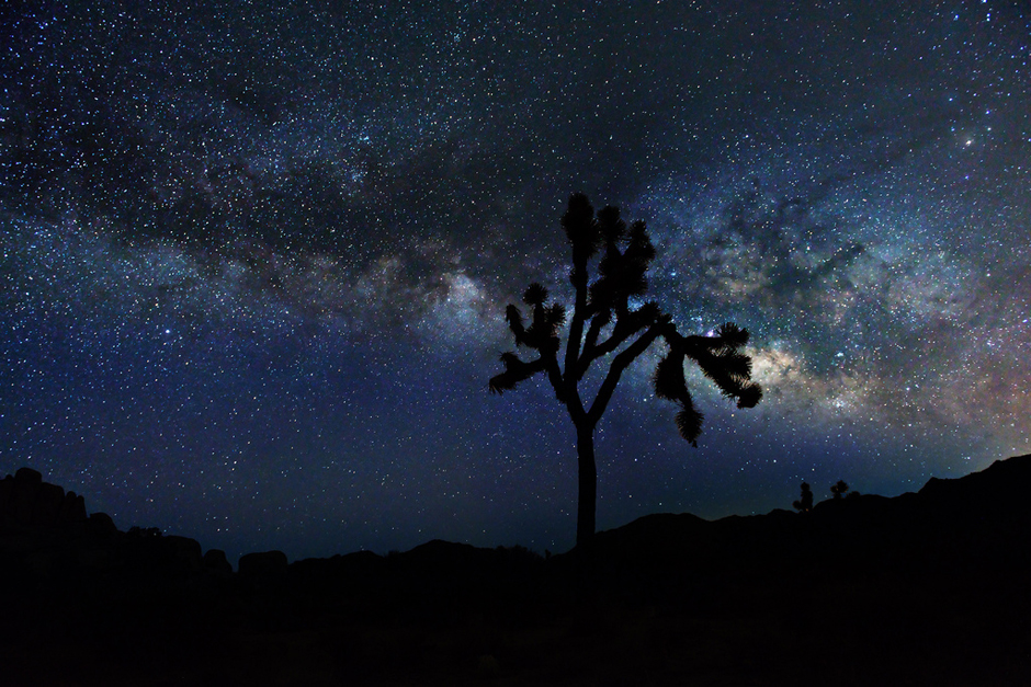 Milkyway from Joshua Tree