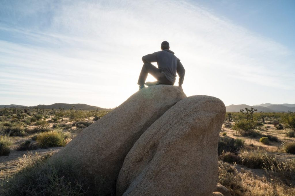 Boulder in field at sunset Joshua Tree