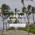 Hawaii Travel Guide - Maui Kauai Big Island