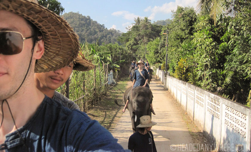 Thai Elephant Home Elephant Trek