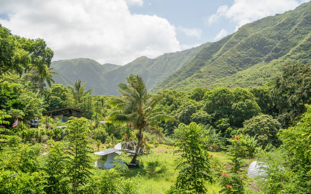 Halawa Valley from the Solatorio property