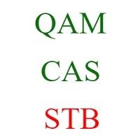 qam cas stb