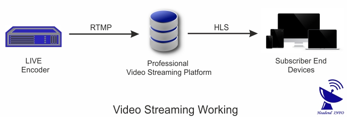 live streaming channel working