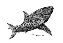 MBolokon_Shark