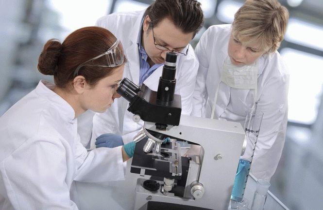 Ученые нашли новое лекарство от всех видов рака