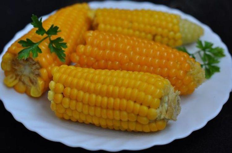 Кукуруза является самым важным зерном после пшеницы и риса. Бессознательно, люди в той или иной форме, каждый день едят больше кукурузы, чем могут себе даже представить. Не подозревая о том, какому риску себя подвергают.