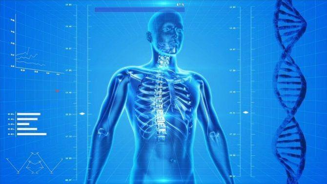 human-skeleton_result