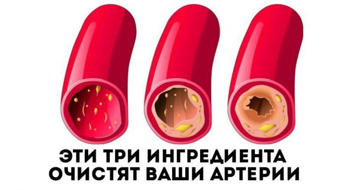 14302359_10154609682509658_385249379_n-696x387