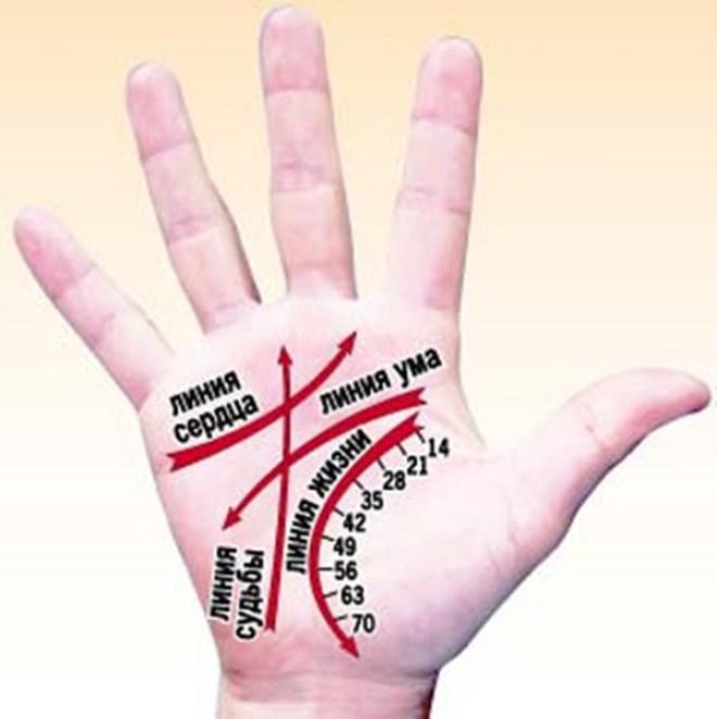 Сам себе хиромант: линии на руках расскажут многое о вашей личности