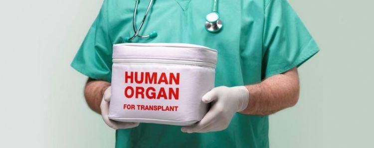 Как Бразилия стала одним из мировых лидеров трансплантологии? Подробное интервью