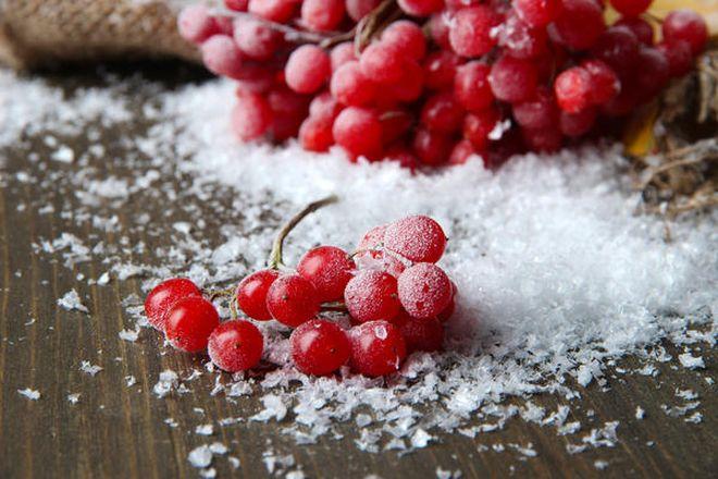 5 фруктов и ягод, в которых косточки полезнее плода