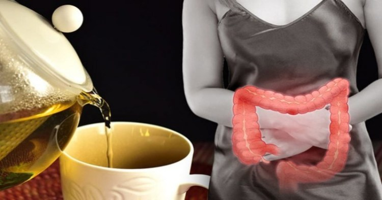 Чтобы навсегда и целый триллион: как поселить в своем кишечнике самые полезные бактерии