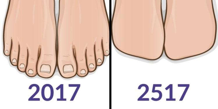 Пальцы на ноге и мужские соски больше не нужны: 10 частей тела человека, которые скоро исчезнут