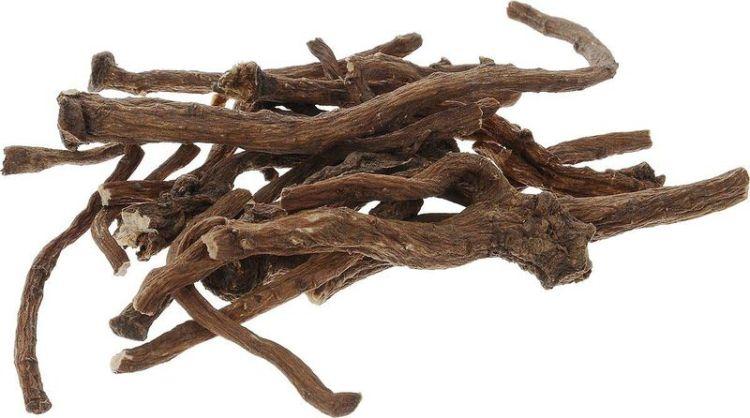 Растение под нашими ногами, спасающее жизни: почему стоит запастись корнем одуванчика