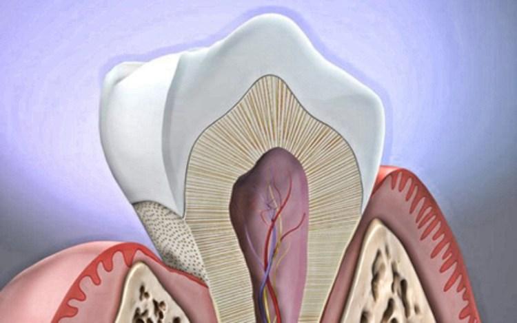 Как не потерять жевательный инструмент: методы лечения оголения шейки зуба