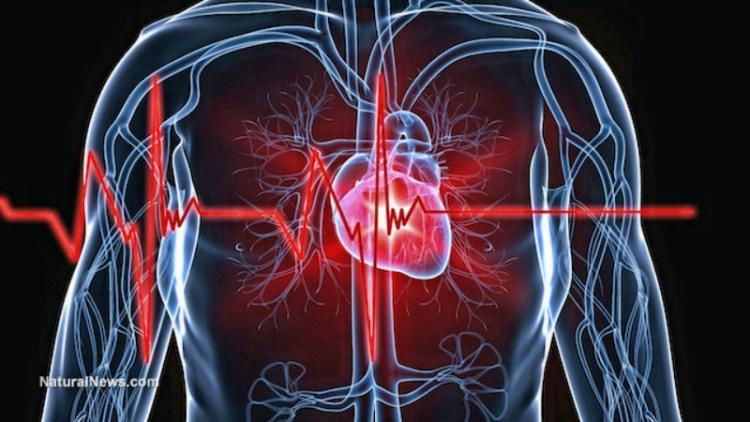 Ученые установили, что диетическая кола - большое зло для сердца и смута для мозга
