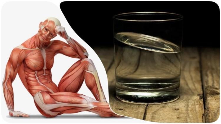 Когда и как правильно пить воду: оптимальный график для организма и макимальной пользы