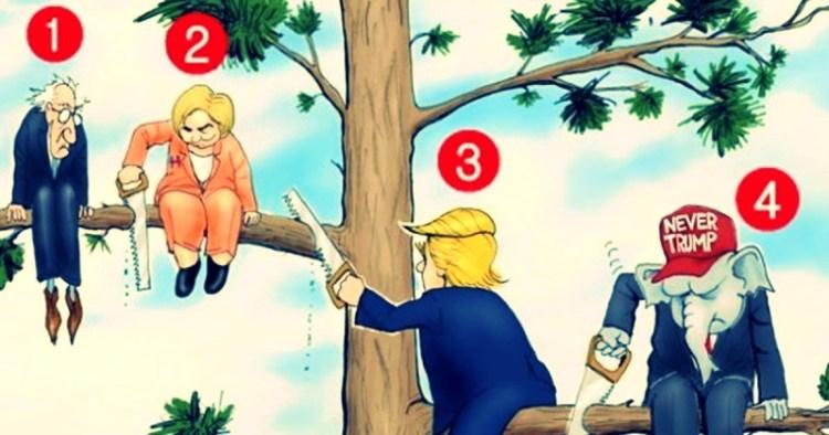 Кто на дереве глупее всех: тест определит, умеете ли вы бороться со стрессом