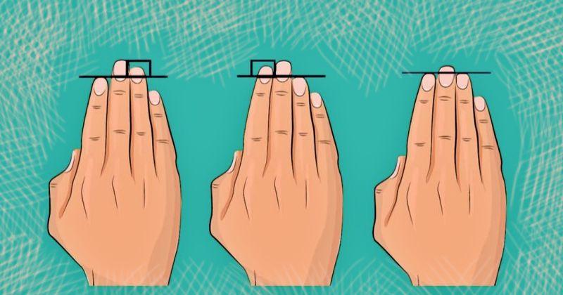 Как судьба человека зависит от длины указательного и безымянного пальцев