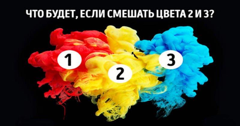 Тест на цветовое восприятие, который проходят лишь 4% людей